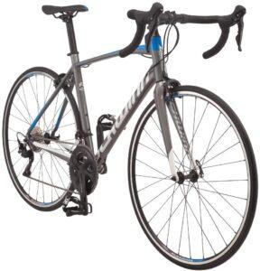 Schwinn Fastback Carbon Road Bike